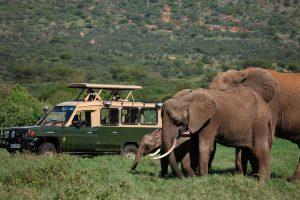 ol-jogi-safari-luxury-kenya-vehicle-jeep