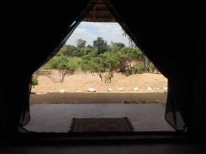 safari-kenya-swara-camp-5
