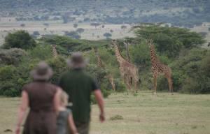 https://pakasafaris.com/safari-kenya-saruni-mara